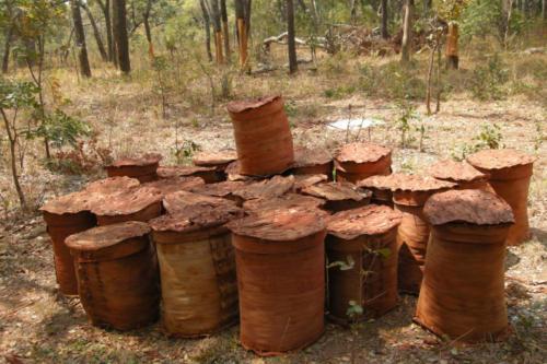 Bark hives (Tanzanie ©Sandra Haesler)
