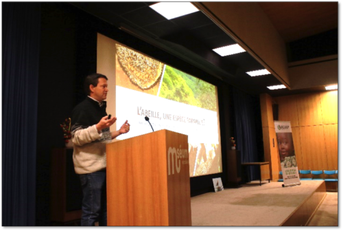 Conference the Bee makes its Buzz at the Museum of Natural History in Geneva. November 23, 2018.