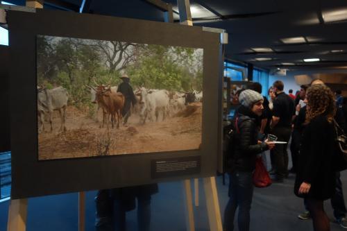 """Vernissage de l'exposition photo """"Voyage en Afrique,au coeur des relations Hommes - Nature"""""""