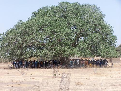 Projet Burkina (2004-2015)