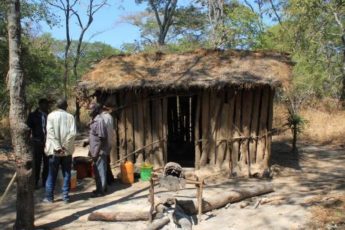 Camp d'apiculteur dans Kululu