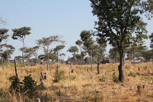 Habitations de Wasukuma qui bordent la réserve de Kululu